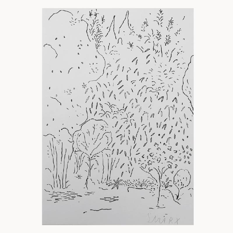 Garden Cologne - ink on paper Bild